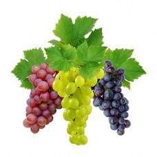 Виноград (кишмиш)