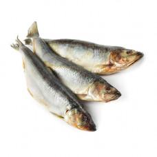 Рыба замороженная Скумбрия (1кг)
